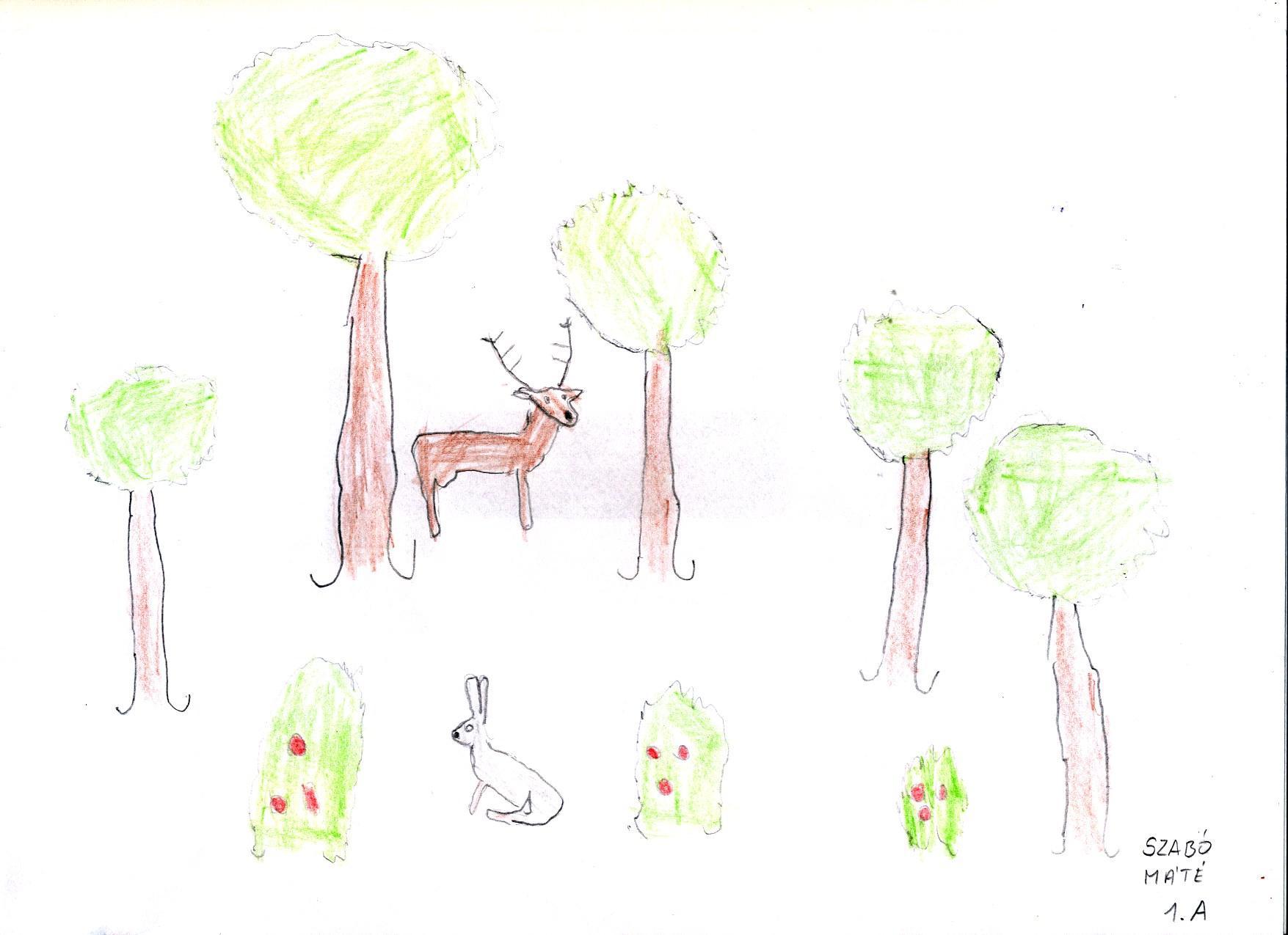Élményem az erdőben Debreceni Vörösmarty Mihály Általános Iskola