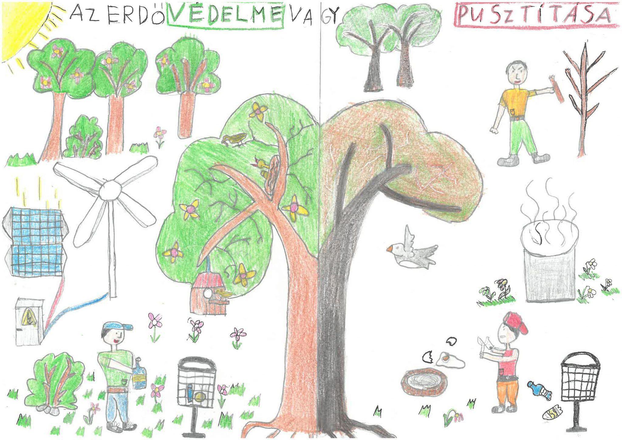 Az erdő védelme vagy pusztítása Hajdúhadházi Földi János Általános Iskola