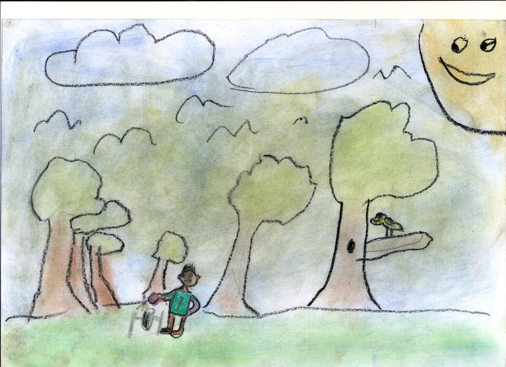 Védem az erdőt Debreceni Vörösmarty Mihály Általános Iskola